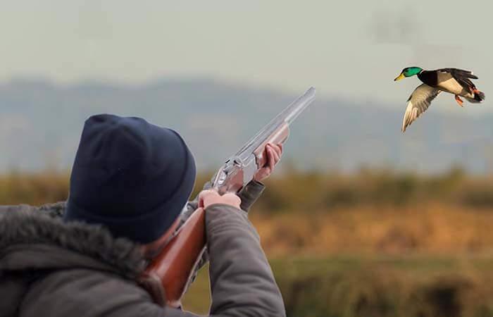 Мужчина целится из охотничьего ружья в утку
