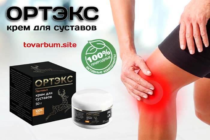 Ортэкс - крем для суставов в продаже в интернет-магазине – Товарный БУМ