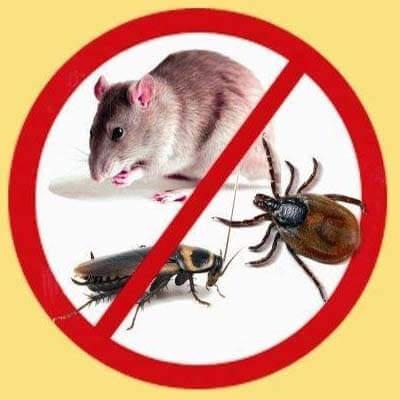 Грызуны и насекомые-вредители, которые можно отпугнуть с помощью устройства - Garden Pro (Гарден Про)