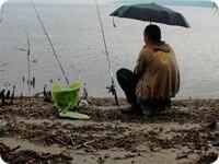 Печальный рыбак под дождем